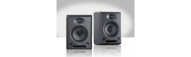 Sonodyne SRP 500 - 2 Way Active Reference Monitor