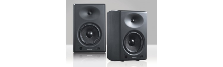 Sonodyne SRP 800 - 2 Way Active Reference Monitor