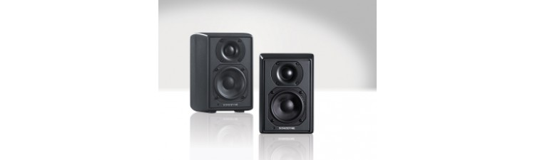 Sonodyne SRP 350 - 2 Way Active Reference Monitor