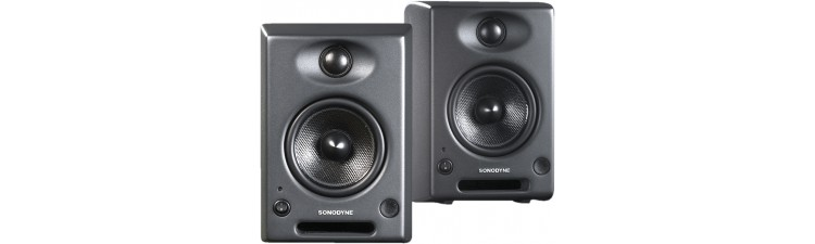 Sonodyne SRP 400 - 2 Way Active Reference Monitor