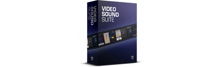 Waves: Video Sound Suite